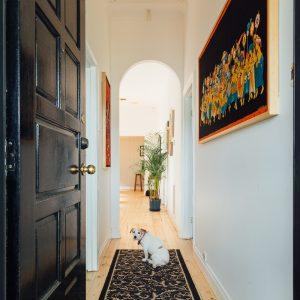 dog in hallway